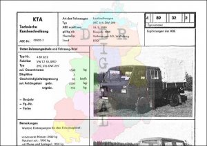 Lastkraftwagen 29C 315-DW-299