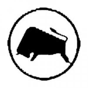 VEB IFA-Getriebewerke Brandenburg